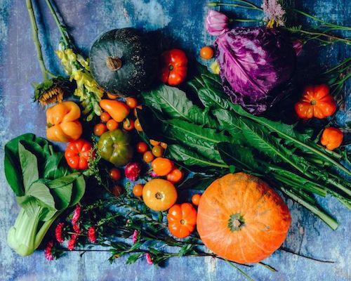 spm naturopathie alimentation