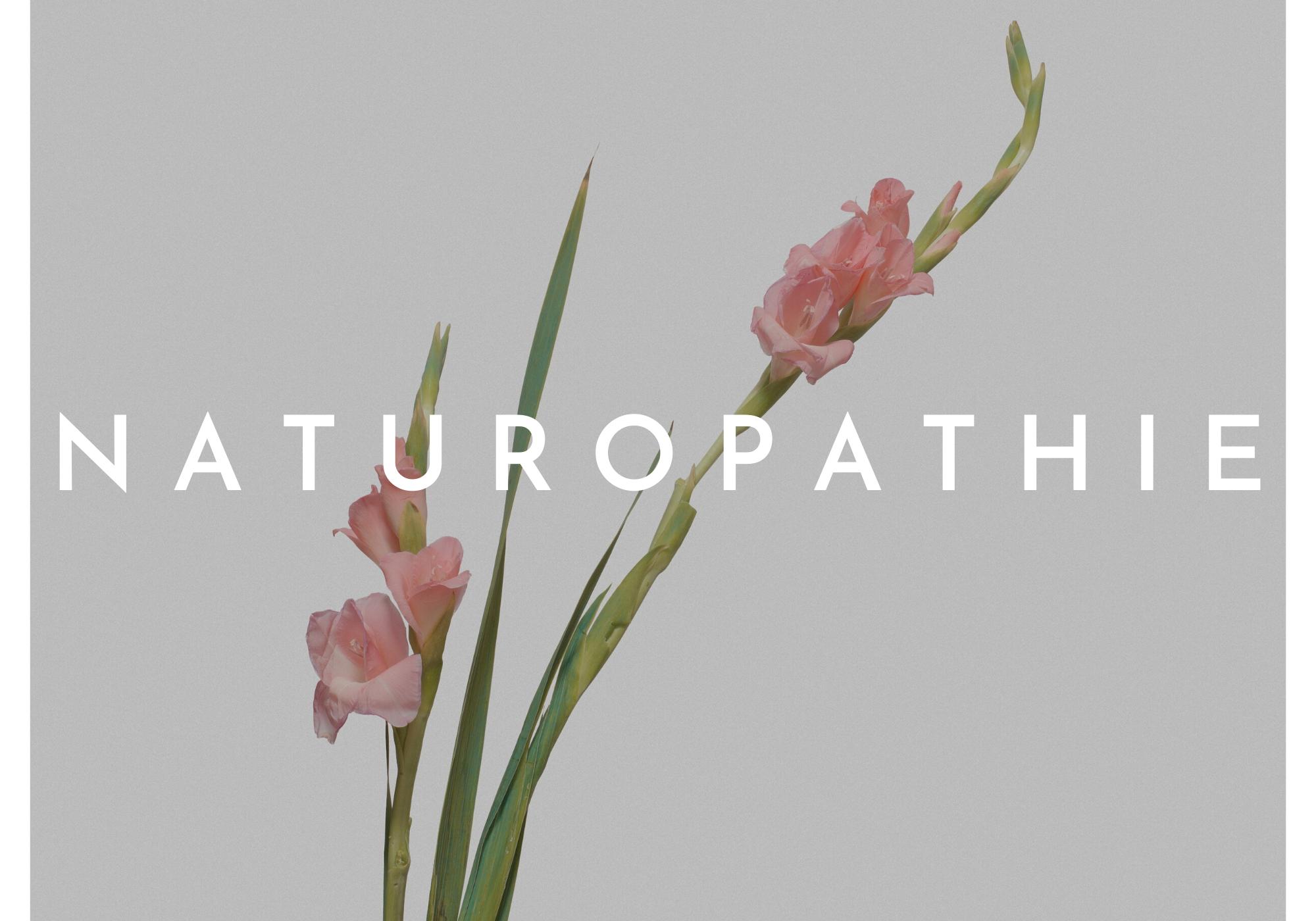 Naturopathie Toulouse - Bien-être, vitalité, forme, équilibre, qualité de vie