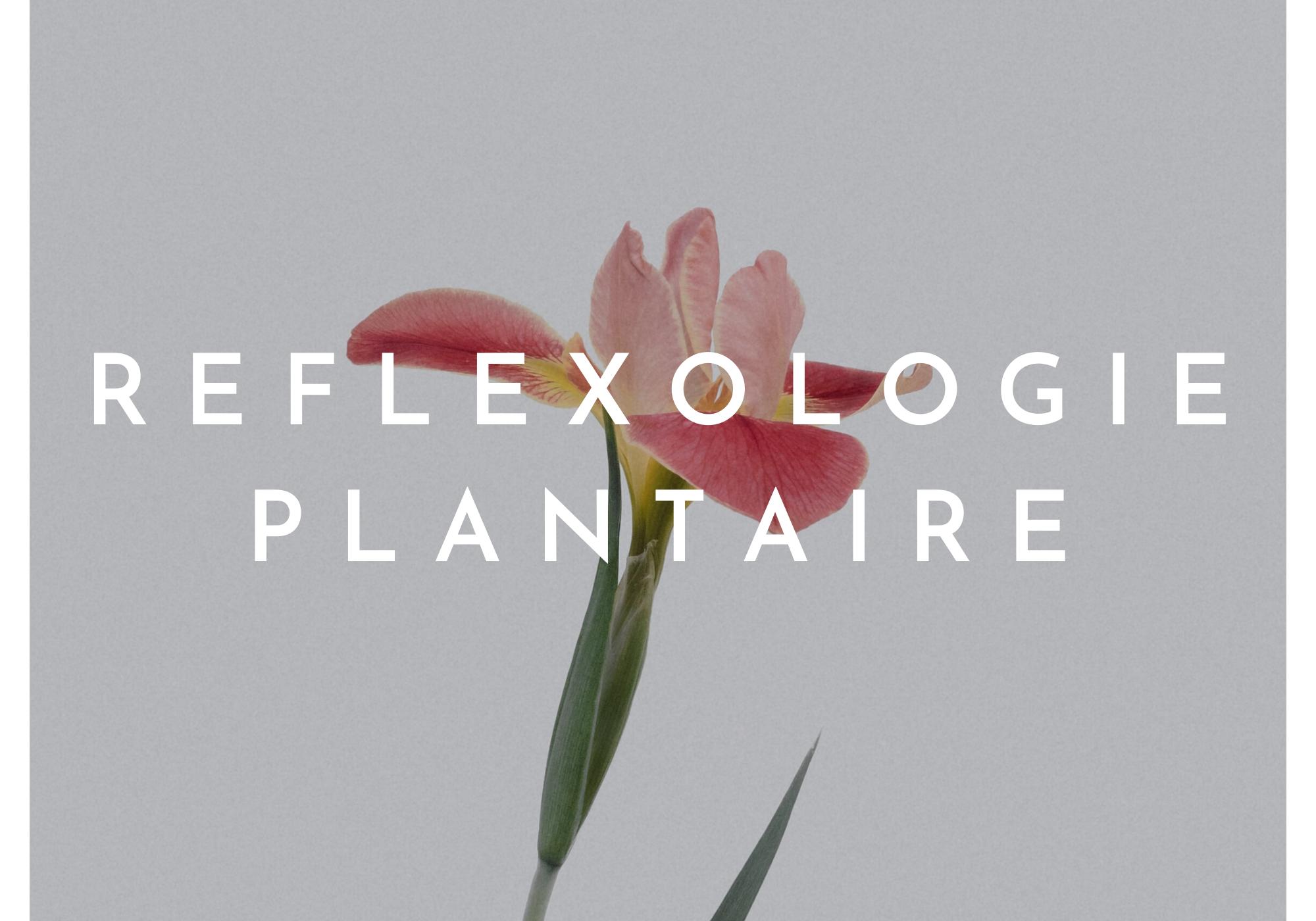 Réflexologie plantaire Toulouse - Equilibre, détox, bien-être, forme, santé